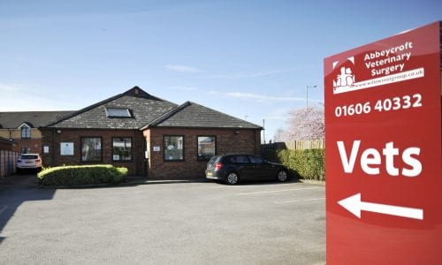 Emergency care available at Abbeycroft Veterinary Surgery in Northwich